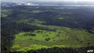 Amazônia   Foto: AFP