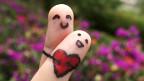 """Foto de un lector de BBC Mundo por el tema """"amor"""""""