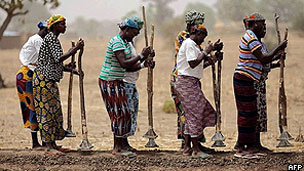 Mulheres africanas cultivam campo (AFP)