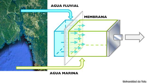 Mapa explicando la generación de energía eléctrica por el flujo de agua dulce hacia agua salada