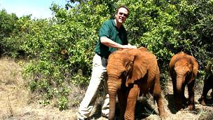 Nevin junto a elefantes bebés huérfanos
