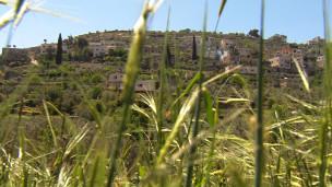 روستای بتیر