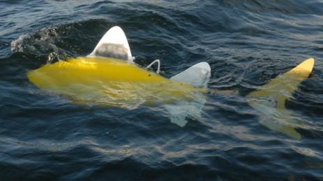 Robot Ikan Untuk Kurangi Polusi [ www.BlogApaAja.com ]