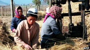 朝鲜自上世纪90年代开始长期面临食物短缺。