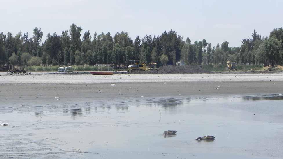 Bbc mundo noticias el lago mexicano que se trag la tierra for Como construir un lago artificial