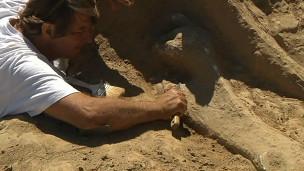 Cemitério de mamutes