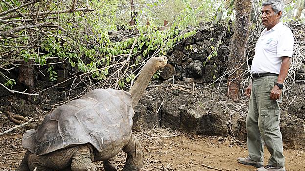 Don Fausto Llerena junto al Solitario Jorge Foto: gentileza Dirección del Parque Nacional Galápagos