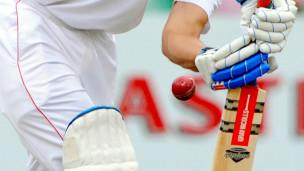 Cricket DRS