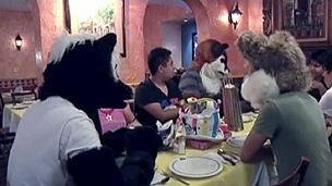 Membros do movimento furry do México contam que as pessoas ainda olham de forma estranha (BBC)