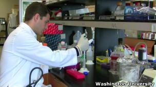 Pesquisador de leucemia no laboratório