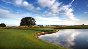 Sân chơi golf (hình minh họa)