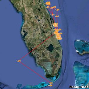 imagen de google maps con tiburones