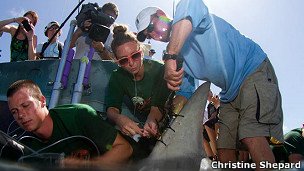 dispositivos de rastreo en las aletas de un tiburón martillo
