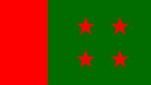 awami league flag