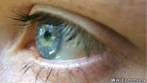 Olho Humano | Foto: WikiCommons