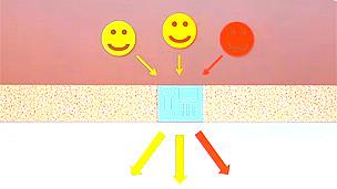 Dibujo para ilustrar el funcionamiento de los receptores acoplados a proteínas G
