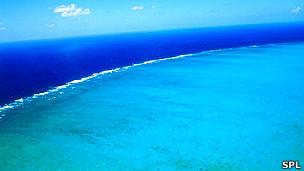Gran Barrera de Coral Foto SPL