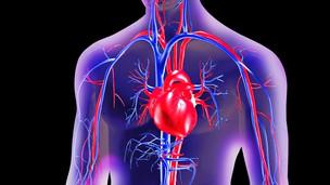 Corazón y vasos