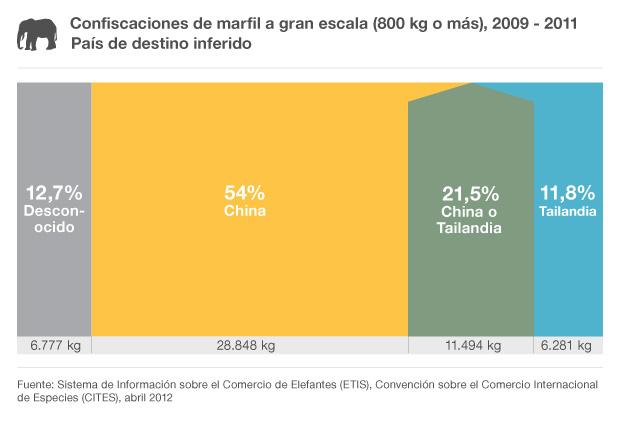 Gráfico sobre el destino de marfil confiscado