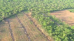 Avance de la frontera agrícola en el Chaco vista desde el aire