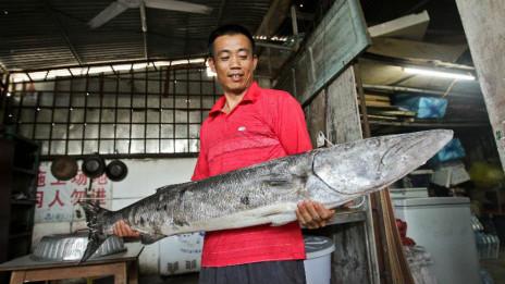 Ngư dân 'Tam Sa' khoe thành quả đánh bắt