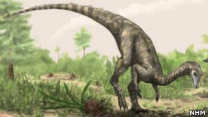 Nyasasaurus parringtoni