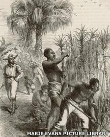 Dibujo de esclavos africanos en una plantación colonial