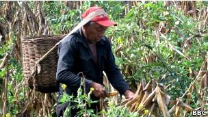 O indígena Juan Bautista (Foto: BBC)