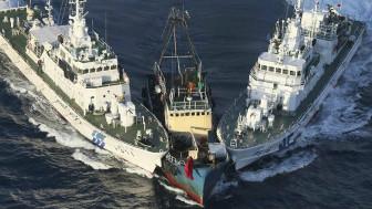 Tàu Nhật Bản bắt tàu cá Trung Quốc vào vùng biển Senkaku/Điếu Ngư
