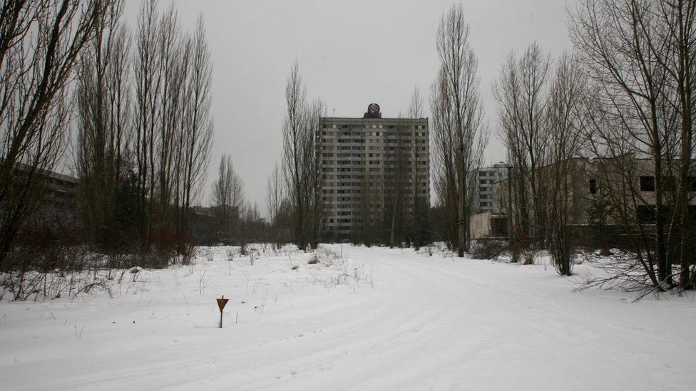 чорнобилі фото