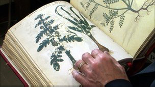 Libro medicinal antiguo