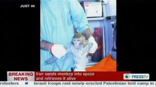 Lançamento de foguete com macaco