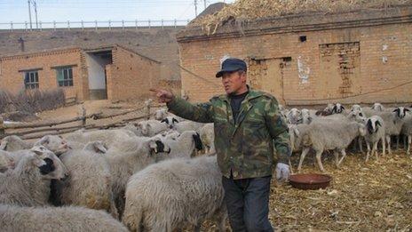 Campesino chino