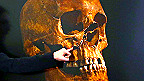 Hộp sọ vua Richard III