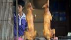 Quán thịt chó ở Việt Nam