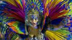 Lễ hội hóa trang 2013 ở Rio