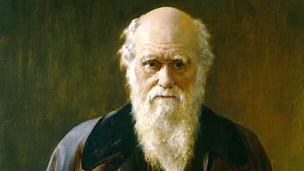 Charles Darwin Cuadro en la National Portrait Gallery de Londres