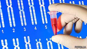 Análisis de material genético en el laboratorio