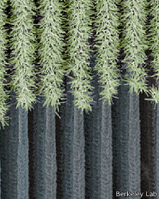árbol artificial