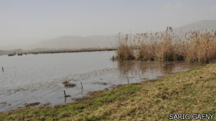 Zona pantanosa en el valle de Hula, Israel