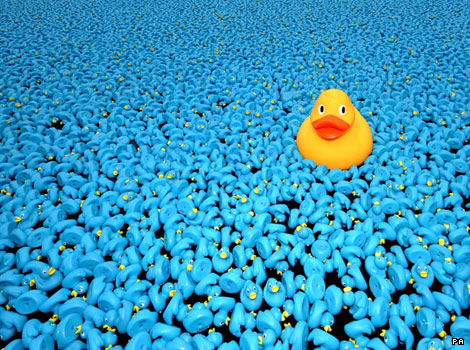 A yellow duck among thousands of blue plastic ducks on the River Thames