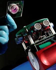 Robot con ruedas