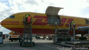 Avión que transportó a la familia de Gorilas