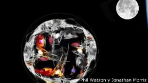 Ilustración de Phil Watson y Jonathan Morris