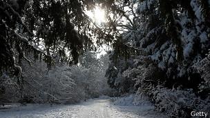 Sol en invierno