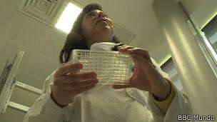 Isabel de Moraes, coordinadora del Laboratorio de Proteína