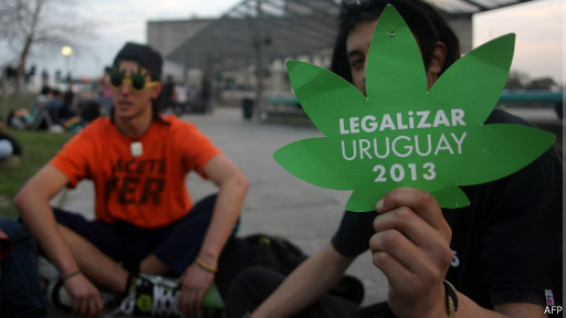 Jovens fazem defesa de projeto de lei que legaliza a maconha no Uruguai (AFP)