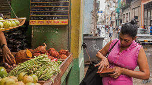 Mujer comprando vegetales