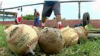 Entrenamiento de beisbol en Cuba