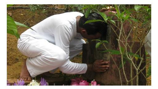 Nimal Samantha at his mother's grave